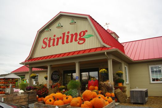 NBew Stirling Store