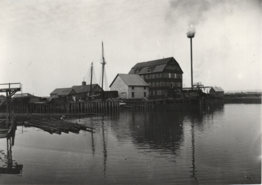 The Skoda building in 1900 when it was being used as a grain mill